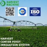 農業のためのスプリンクラー潅漑