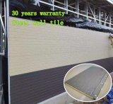 La parete copre di tegoli l'acciaio esterno dell'interno delle mattonelle della parete del materiale da costruzione della parete della decorazione