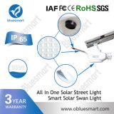 lâmpada ao ar livre solar leve do diodo emissor de luz da rua do brilho 30W elevado
