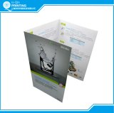 Impressão Offset Cores barata panfletos folhetos