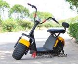 Mejor populares Citycoco Harley de 2 ruedas moto, scooter eléctrico con batería de plomo ácido