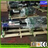Bomba de alta presión Multi-Satge para el circuito de agua industrial del RO