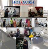 Holiaumaの大きいサイズの単一のヘッドフラットキャップの衣服のTシャツの刺繍機械はTajiamaシステムを好む