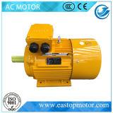 motore elettrico 0.06kw-630kw con lo standard di IEC e le norme GOST