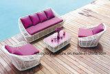Mobilia del patio del sofà del rattan di colore giallo di disegno moderno (TG-JW15)