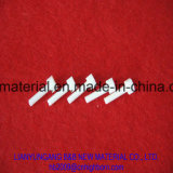 Personalizar el tornillo de cerámica de alúmina de M6