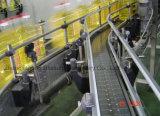Máquina de enchimento asséptica da cerveja do frasco de vidro