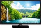 Schermo piano 19 32 40 50 affissione a cristalli liquidi astuta LED TV di colore di pollice HD