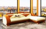 Sofà di cuoio moderno di stile (L053)