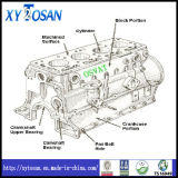 Le bloc-cylindres pour VW 1.9TDI/ 2.0L/ JV481/ Ajr481/ Ajr481g/ Ajr481A (TOUS LES MODÈLES)