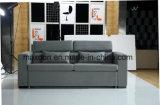 Neues modernes populäres elegantes Entwurfs-Wohnzimmer-Sofa-Eurobett