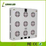 Haute puissance nouvellement développé 1800W plantes poussent des cris de lumière LED de rafles de la lumière avec ce fac RoHS énumérés