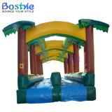 大人の膨脹可能な水スライドの膨脹可能なプールのスライド
