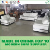 Insieme bianco del sofà del cuoio genuino della mobilia moderna del Ministero degli Interni