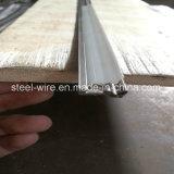 S58c kaltgewalzter Edelstahl-Strangpresßling-Profil-Stahl China