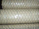 Плетение провода цыпленка высокого качества шестиугольное (цена по прейскуранту завода-изготовителя)