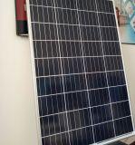 Hete Verkoop 36 Zonnepaneel van de Prijs van Zonnecellen het Goedkope 155W