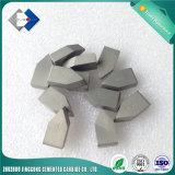 La ISO E25 de tipo standard del carburo de tungsteno cubrió con bronce las piezas insertas