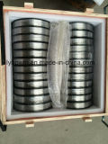 Hot Sale에 있는 RO5200 Pure Tantalum Wire Diameter 0.2mm Annealed