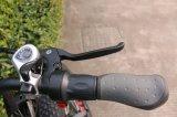 Graisse électrique de vélo de la Chine Hotsell