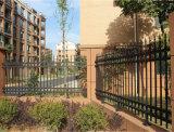Clôture résidentielle décorative sensible personnalisée de premier niveau