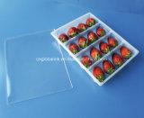 Контейнер еды отверстий PP 16 пластичный