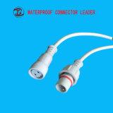 OEMは熱い販売の電子工学2 Pinの自動コネクターケーブルを受け入れる