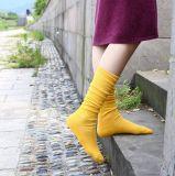 Chaussettes pures de bord de dames de couleur de ressort de segment de mémoire de sucrerie coréenne d'automne
