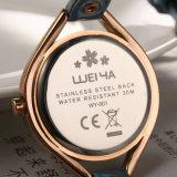 صنع وفقا لطلب الزّبون [لثر سترب] أرباع هبة سيادات ساعة مصنع صاحب مصنع ([و-001غ])