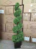 Künstliche Pflanzen und Blumen des Boxwood-Baums Gu828289392