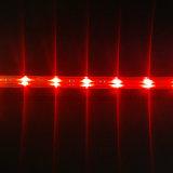 Alto indicatore luminoso alimentato basso dell'indicatore luminoso di striscia di luminosità di SMD 5050 10mm 220V LED