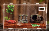 Slang van het Glas van de Verkoop van de Fabriek van Qcy het de Directe Sterke Veilige Organische/Huis van het Kruippakje