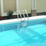 Escada inoxidável antiderrapante da associação Steelss304 da piscina de Fenlin
