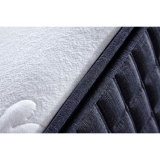 Vuoto Pocket della molla rotolato sul materasso appiattito del bambino della gomma piuma per la mobilia dell'hotel