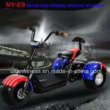 3 Колеса электрический двигатель груза инвалидных колясках/грузовой велосипед /Bike /Trike