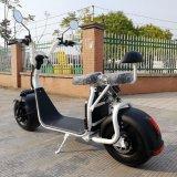 EEC сертифицированных Харлей электрический скутер 1600W 60V