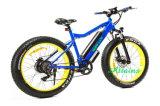 싼 최고 Ebikes 무브러시 모터 관제사 전기 자전거 또는 전기 자전거