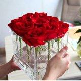 Cadre de empaquetage de fleur acrylique claire imperméable à l'eau de Rose