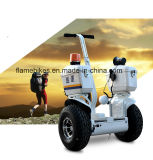 1000W off Electric Motorcycle avec 96 V batterie au lithium