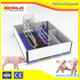 Производство оборудования для сельского хозяйства Farrowing ящик для продажи