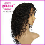 Quercy 8A 아기 머리 (hw-047b)를 가진 브라질 Virgin 사람의 모발 실크 최고 레이스 정면 가발 바디 파 가득 차있는 레이스 인간적인 파도치는 가발