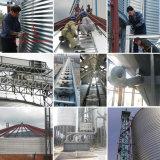 Gewölbter galvanisierte Metallstahlkorn-Silo