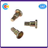DIN/ANSI/BS/JIS Carbon-Steel/Stainless-Steel 4.8/8.8/10.9 Passo Redondo Galvanizado Pin para Indústria Mecânica/Fixador