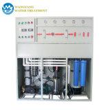 5t/d'eau minérale système RO Mini-usine de dessalement de l'eau salée