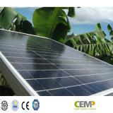 La fuori-Griglia & l'energia solare di su-Griglia proietta il poli PV comitato solare altamente riconosciuto di 320W (modulo)