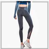 L'yoga calda dei vestiti di ginnastica di usura di 2016 di vendite sport di forma fisica ansima Legging per le donne