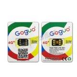 * De Kaart van Goguo V20 SIM opent iPhone 5 6 6s 7 plus voor Al Ios GSM CDMA 2/3/4G