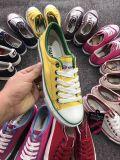 在庫のよい価格の偶然靴は多数着色する