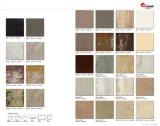 Azulejos de suelo elegantes de la porcelana de 24X24' en los E.E.U.U. (AJJD60072)