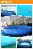 Raggruppamento gonfiabile del cerchio di nuoto con il singolo tubo